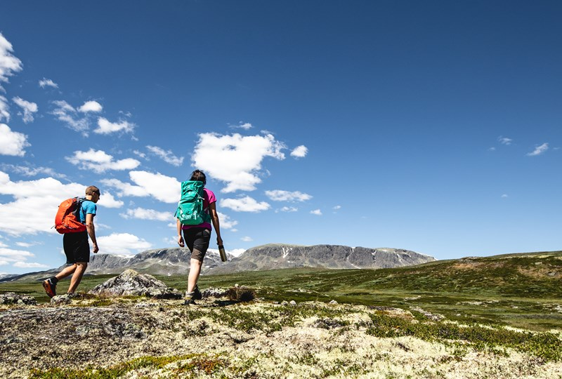Hiking Geilo Hallingskarvet Photo Paul A Lockhart Visit Geilo (10).jpg