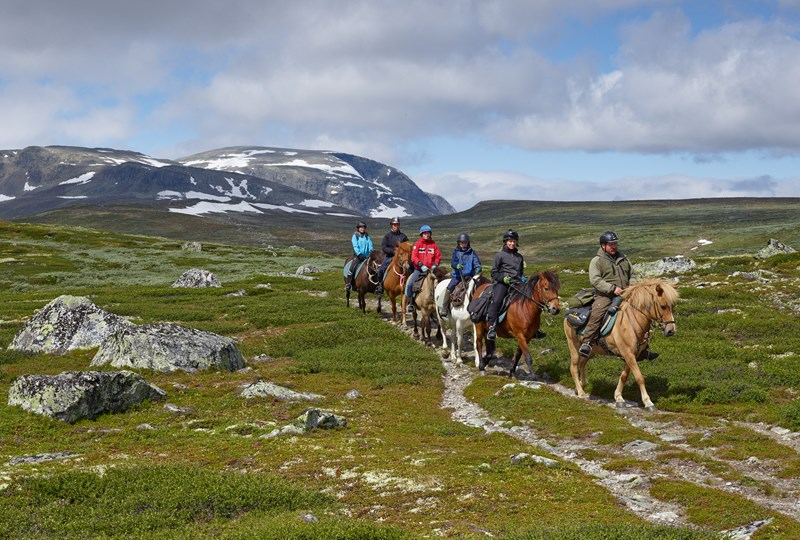 Horseback riding in the mountains, Geilo.jpg